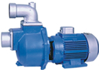 Effluent pump